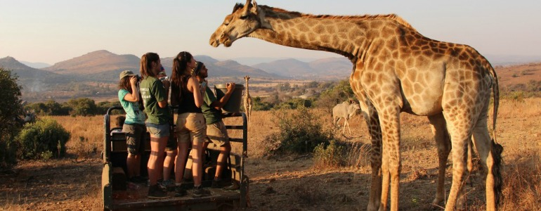interns up close with a giraffe