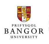 Bangor University Logo