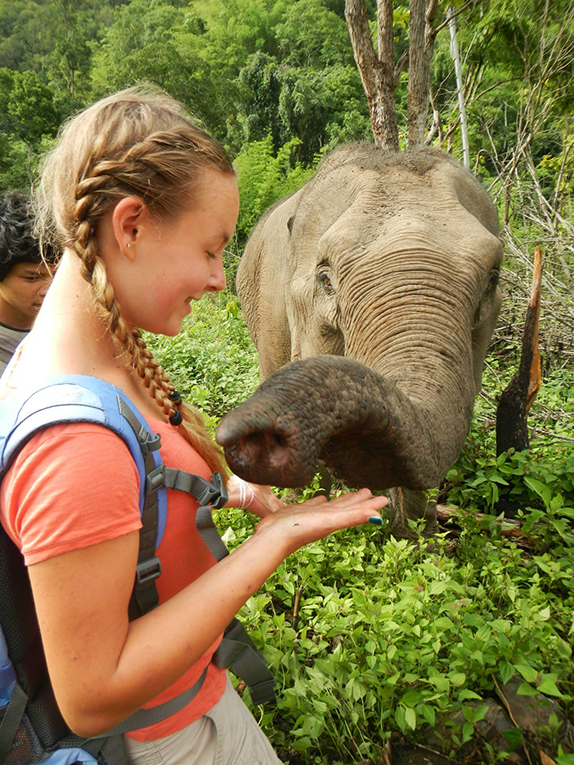 Volunteer petting an elephant in Thailand
