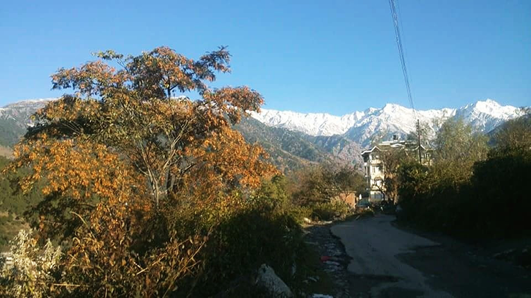 View of the Himalayas in India