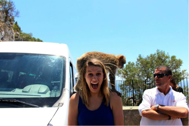 Study abroad student with monkeys in Gibraltar, Morocco