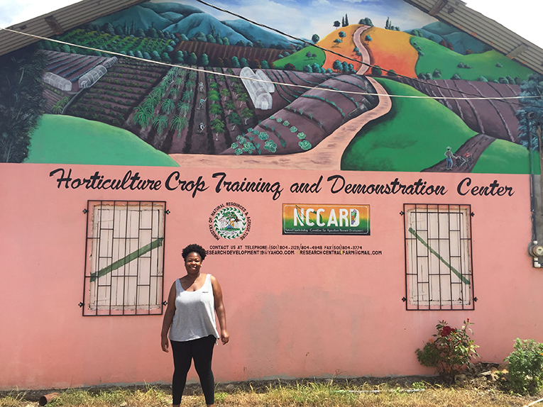 Horticulture Crop Training and Demonstration Center in Belize