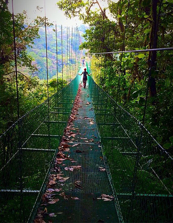 Tarzan Swing in the cloud forest of Monte Verde, Costa Rica
