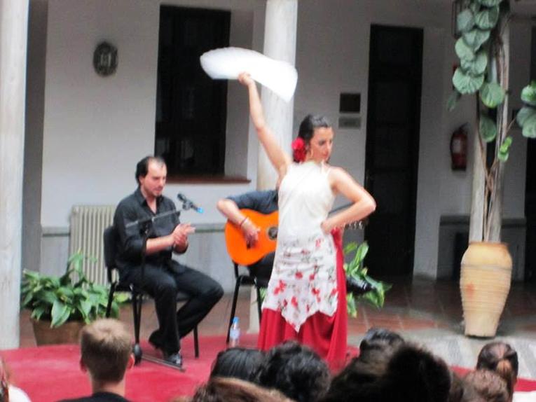 Flamenco performance at the University of Granada