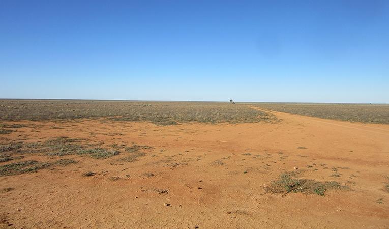 Sprawling landscape in Madura, Australia