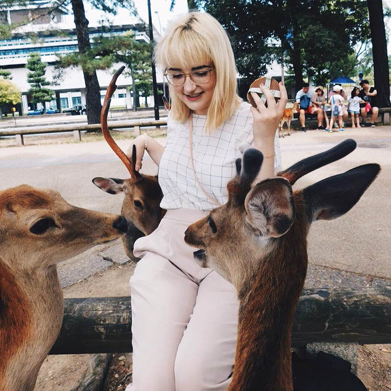 Girl petting deer at Nara Park in Japan