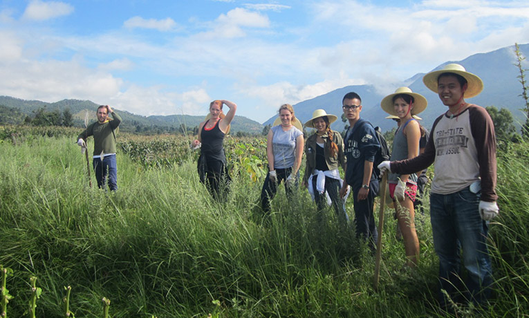 Volunteer farming in Yunnan Province, China