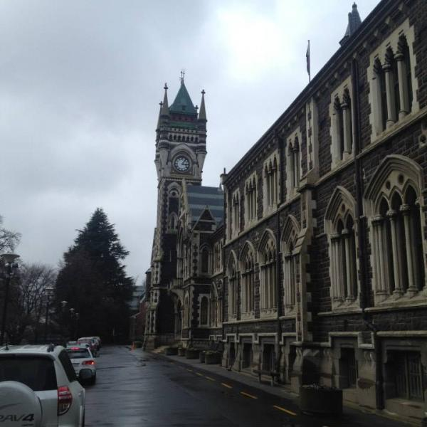 API_study_abroad_Dunedin_3