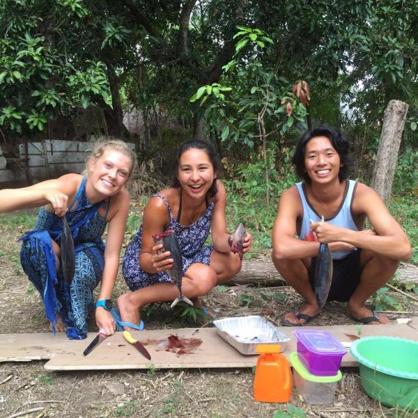 turtle identification research dive gili shark conservation
