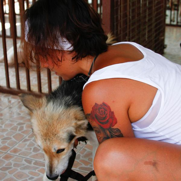 One of the volunteers feeding a dog in the kennels