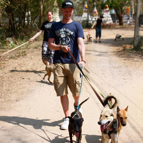 Volunteers walking the kennel dogs