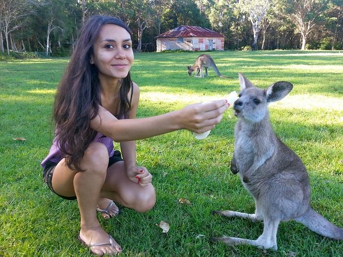 Girl feeding a koala