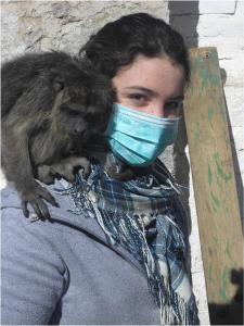 Monkey rescue and rehabilitation in Argentina