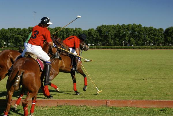 Argentina Polo
