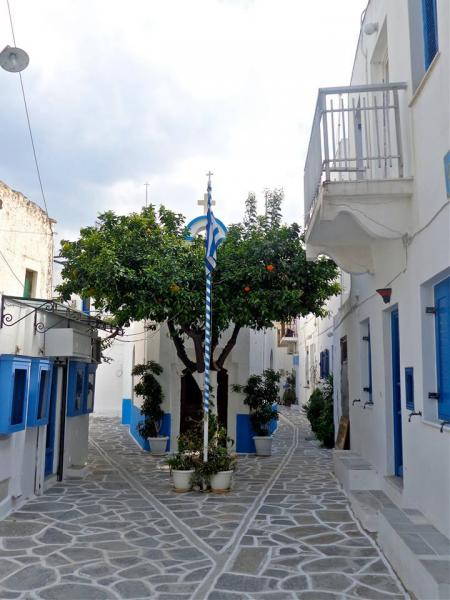 paros island greece flag orange tree
