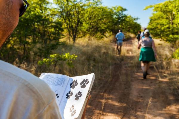 Learning to identify wildlife tracks