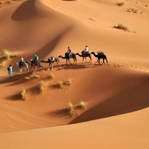 Take a camel ride in Morocco!