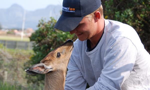 Cape Town Wildlife