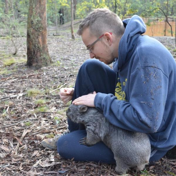 Oceans 2 Earth Volunteers Foundation Volunteering with Australian Wildlife Wombat
