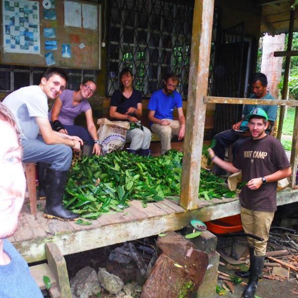 amazon-volunteer-group