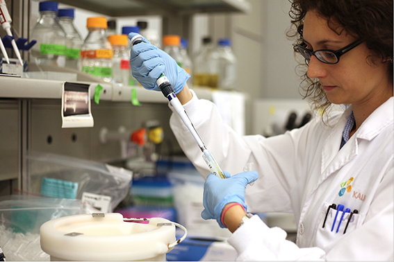 KAUST Research Science Masters PhD Undergrad