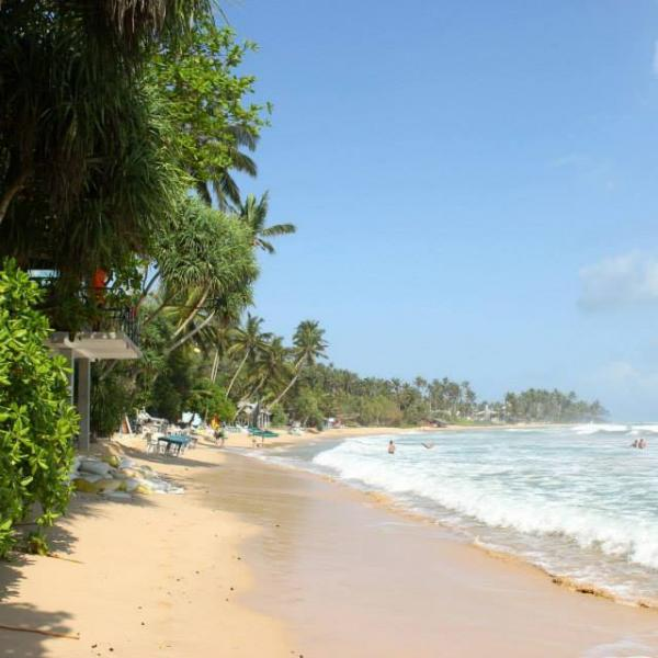 volunteer in Sri Lanka and spends your weekends at these beautiful beaches