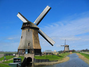 Study abroad in Hague, Netherlands