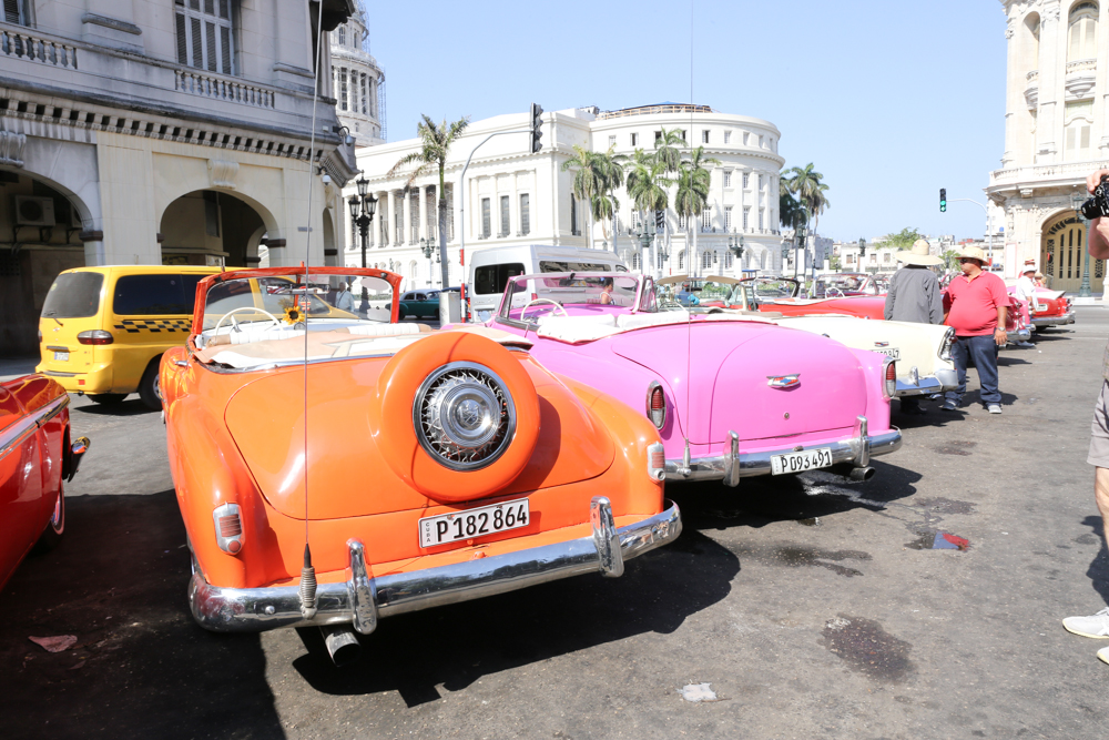 colored beatle cars