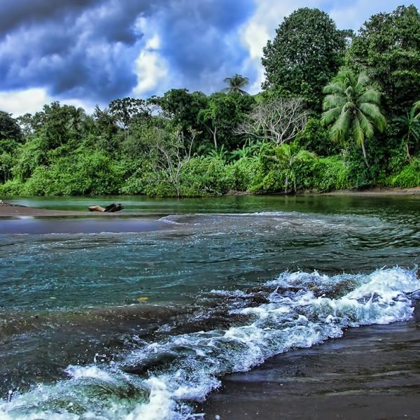 Costa Rica, river shore