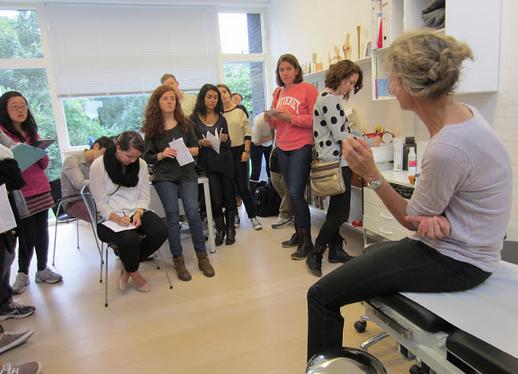 Study Medical Practice & Policy in Copenhagen, Denmark
