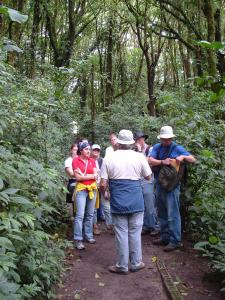 Study abroad in an Ramon, Costa Rica