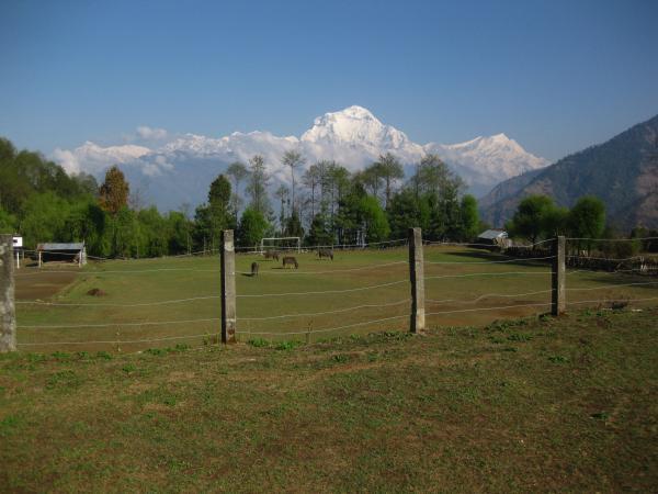 View from the school playground, Annapurna Region, Nepal