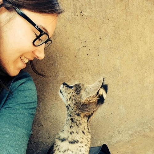 volunteer in lilongwe wildlife center