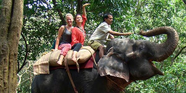 indian-elephant-explore-volunteer-community-service-in-india