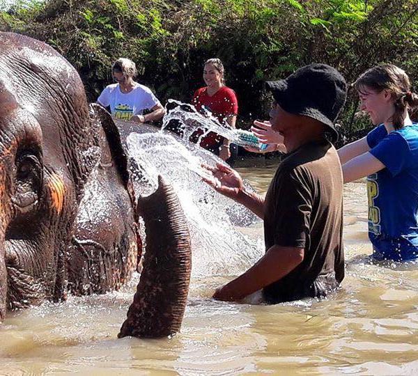Elephant Sanctuary Visit Phuket Thailand