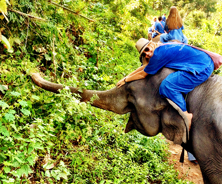 A student riding on an elephant