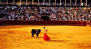 Bullfighting, a traditional Spanish event