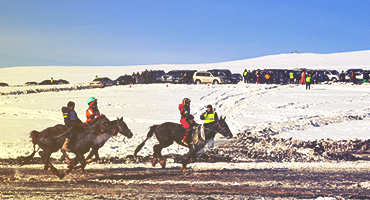 People racing horses on a snowy track