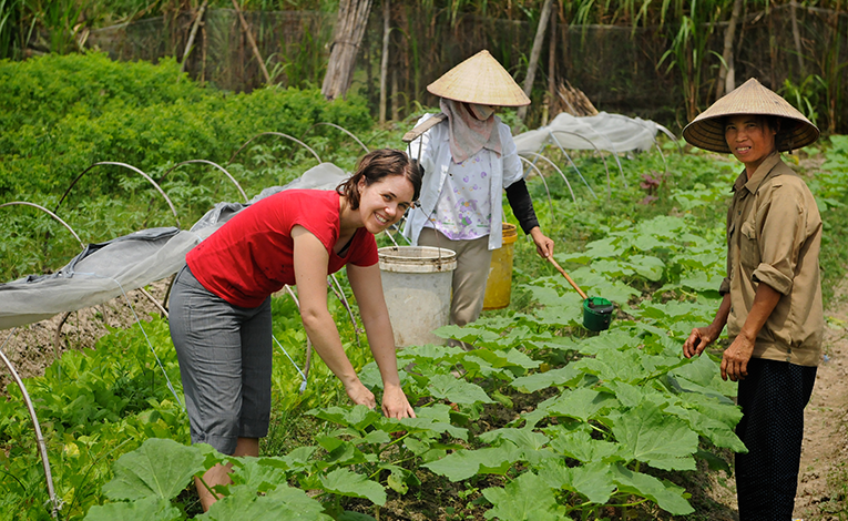 woman working in fields alongside agricultural workers