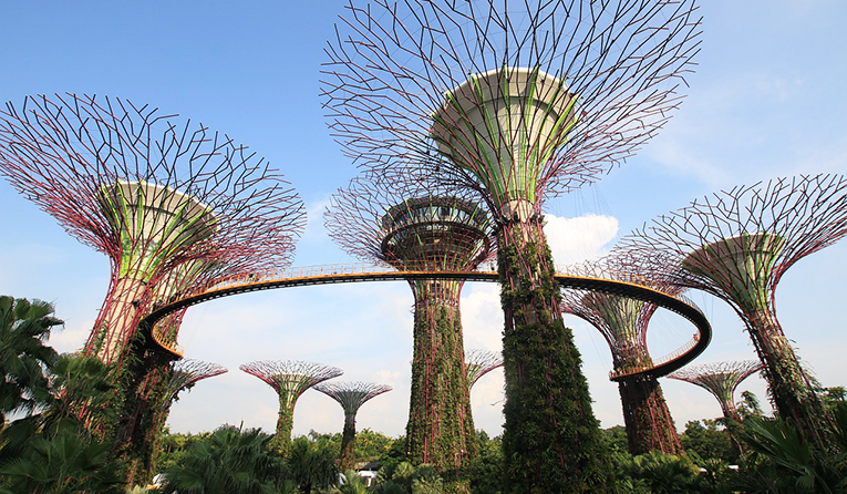 Garden by the bay Supertree Singapore