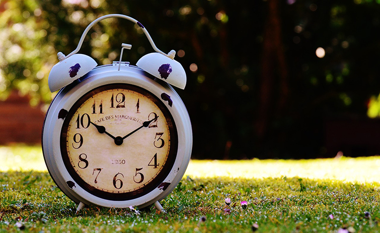 Clock sitting in grass.