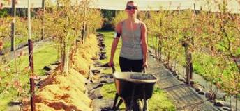 A student spends her free time helping in a New Zealand farm