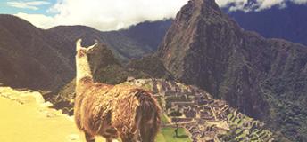 An aerial view of Machu Picchu in Peru.