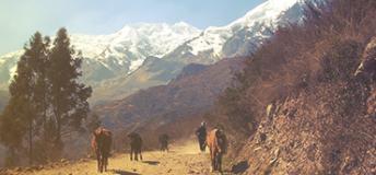 Mountain scene in Bolivia