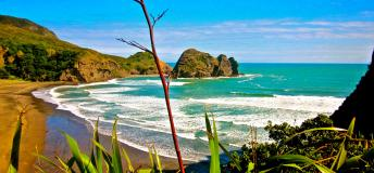 Piha Beach in New Zealand
