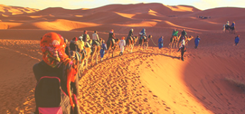 People riding camels in the desert in Morocco