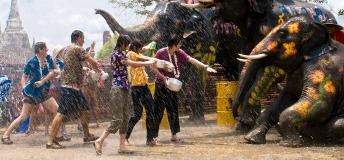 Elephants spraying water on New Year's Eve celebrants in Thailand