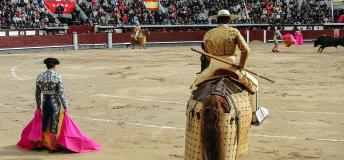 Bullfight in Spain
