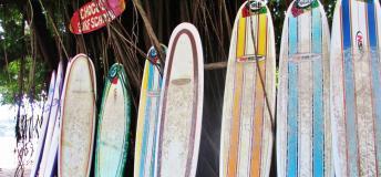 Surf boards in Samara, Costa Rica