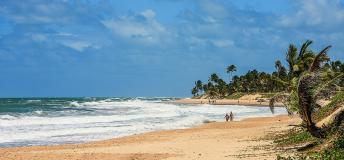 A beach in Brazil